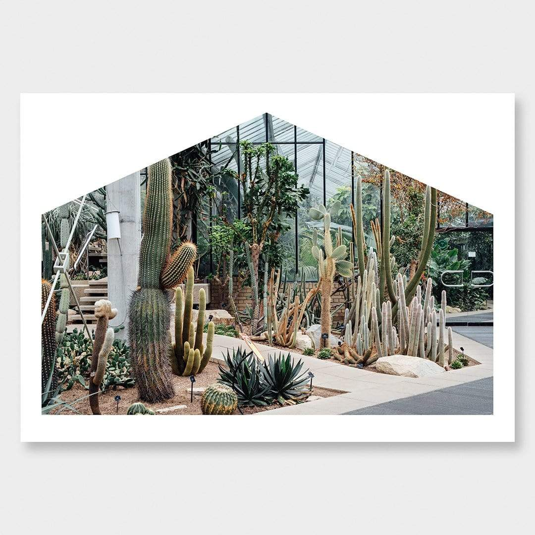 Tropics to Arid Lands Photographic Print by Amy Wybrow