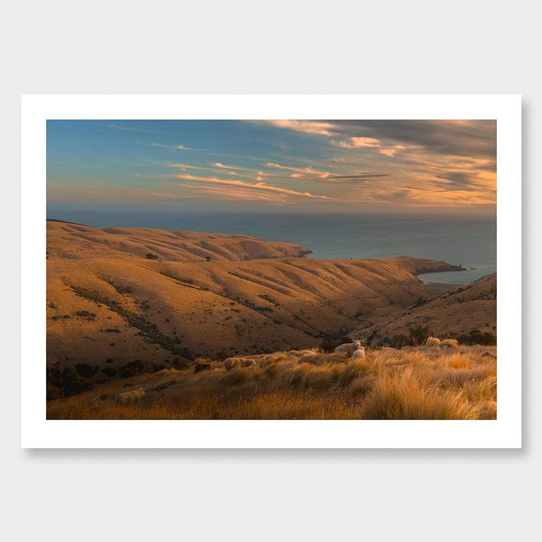 Tumbledown - Te Oka Photographic Print by Mike Mackinven