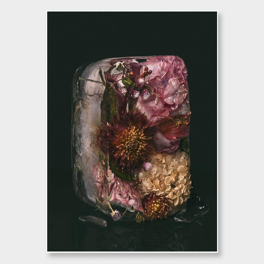 Ice Flower XXV Photographic Print by Maegan McDowell