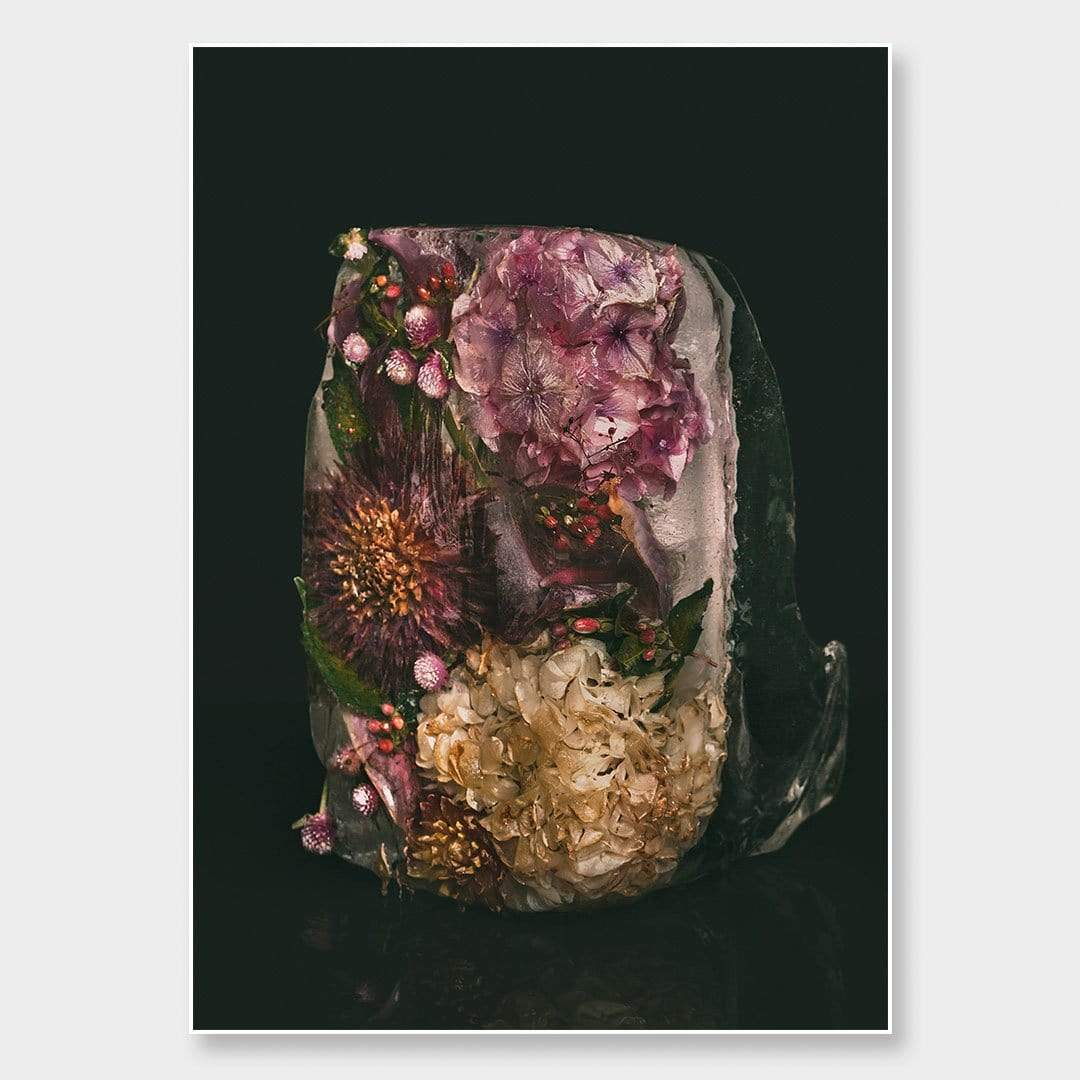 Ice Flower XXVI Photographic Print by Maegan McDowell