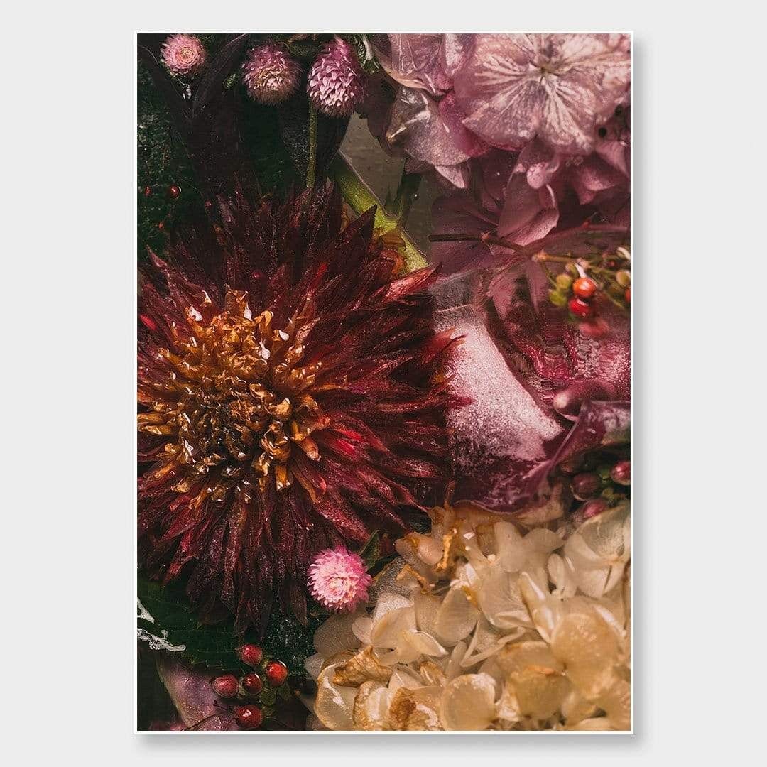 Ice Flower XXVII Photographic Print by Maegan McDowell