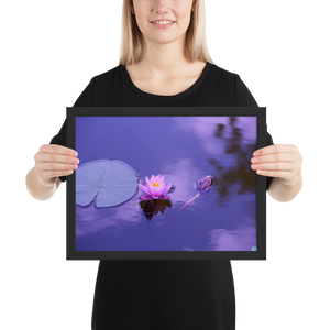 Pink natural lotus - framed matte paper poster
