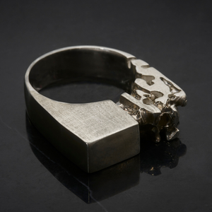 Behind Closed Doors Solid Silver Ring