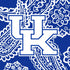 Collegiate Plush XL Throw Blanket-Royal/White Bandana with University of Kentucky-Image 3-Vera Bradley