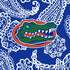 Collegiate Plush XL Throw Blanket-Royal/White Bandana with University of Florida-Image 2-Vera Bradley