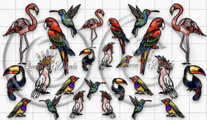 39. Embroidery exotic birds