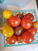 Load image into Gallery viewer, Garden Fresh Tomatoes