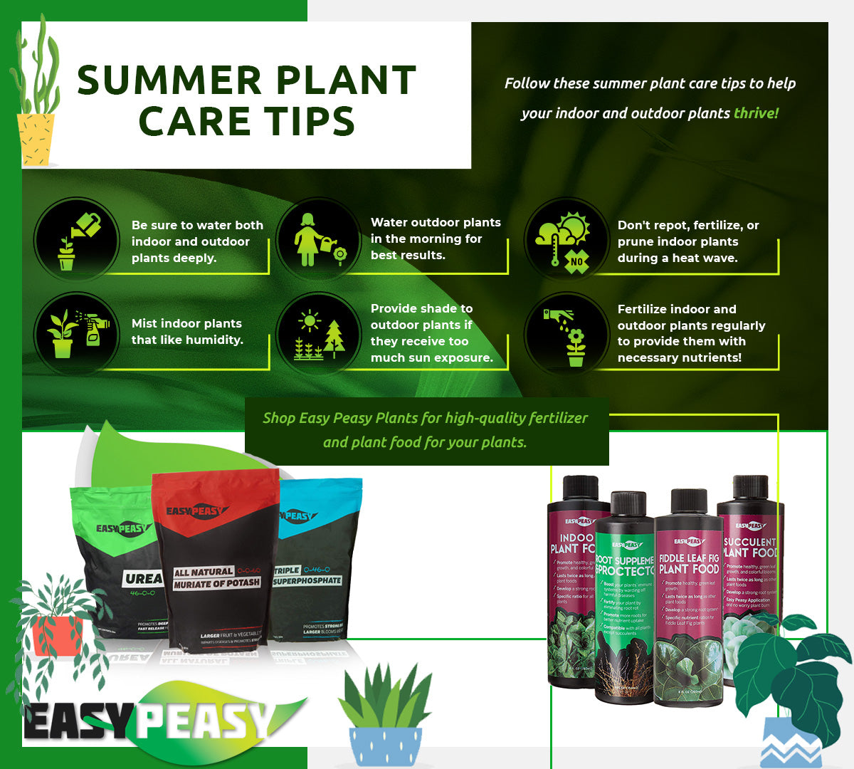 summer plant care tips Infographic