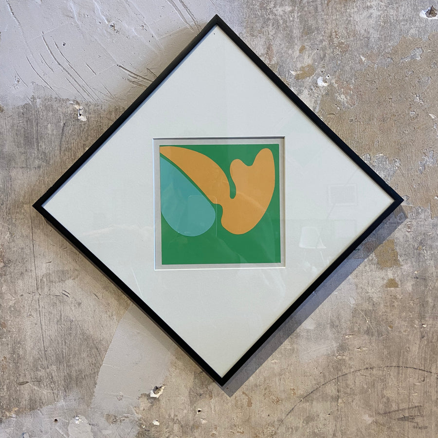 Robert Clark Nelson Pop Art Study Collage - Green/Orange