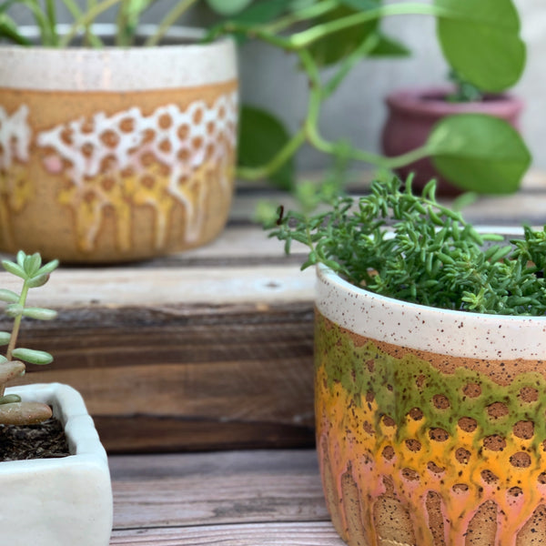 Ceramic Decorative Planter - Good Spark