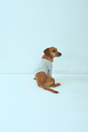 Load image into Gallery viewer, SEA x S for DOGS VINTAGE 吊り裏毛スウェット