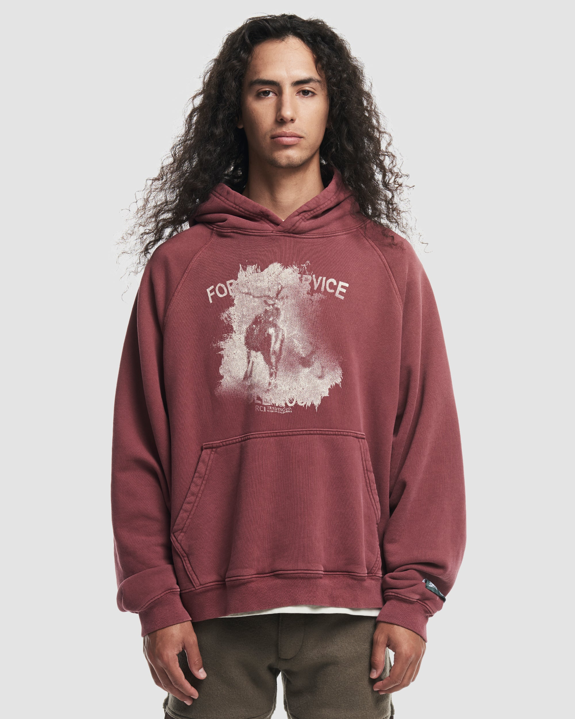 Forest Service Hooded Sweatshirt in Red