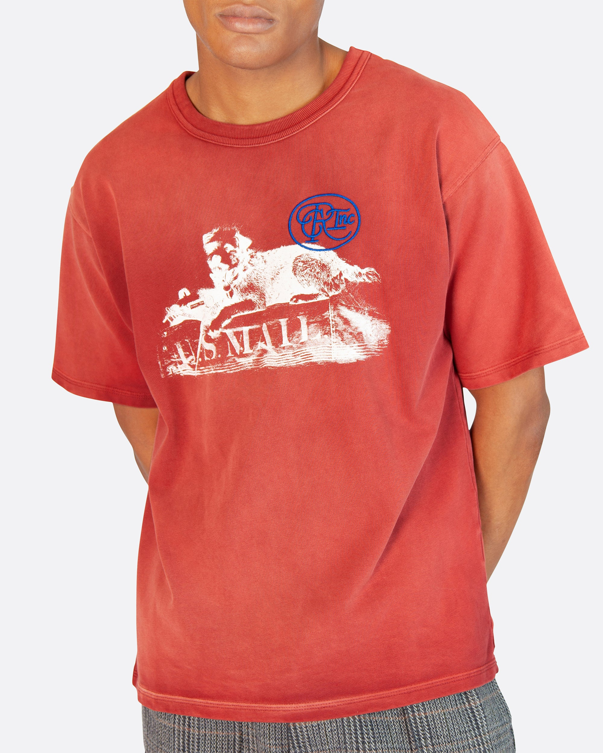 U.S. Mail Dog Aged Tee Shirt in Red