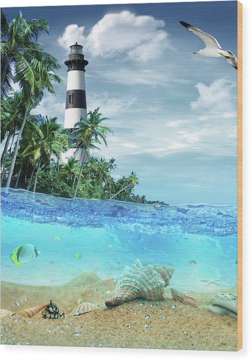 Lighthouse 101 Wood Print