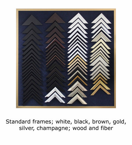 Standard frames; white, black, brown, gold, silver, champagne; wood and fiber