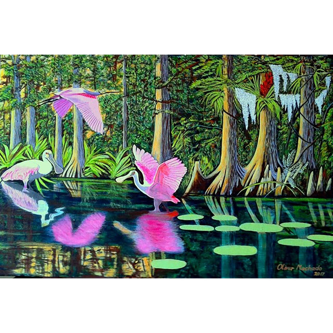 3 flamingos playing on the river