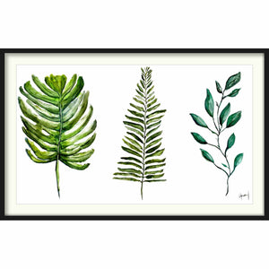 Framed Paper Leaves