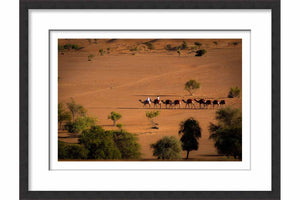 Framed Camels in the Desert