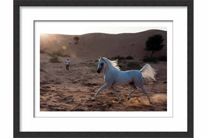 Framed Paper Proud Arabian Horse