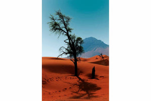 Lonely Tree (Sharjah)