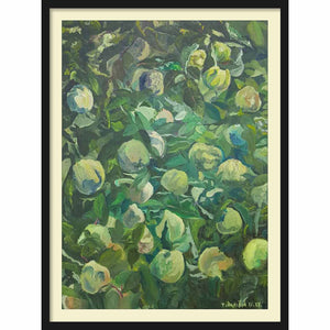 Framed Hardboard Quinces from Drace
