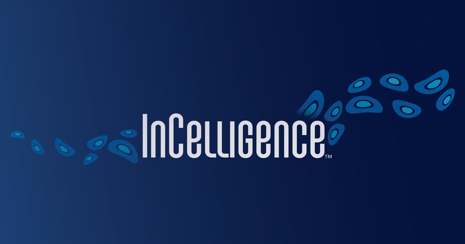 What is InCelligence Technology?