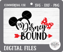 Load image into Gallery viewer, FLASH BUNDLE - DISNEY BUNDLE