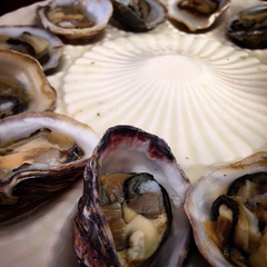 Vintage platter is also the perfect serving piece for oysters on the half shell