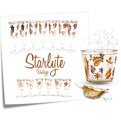 Vintage Starlyte Barware Collection.