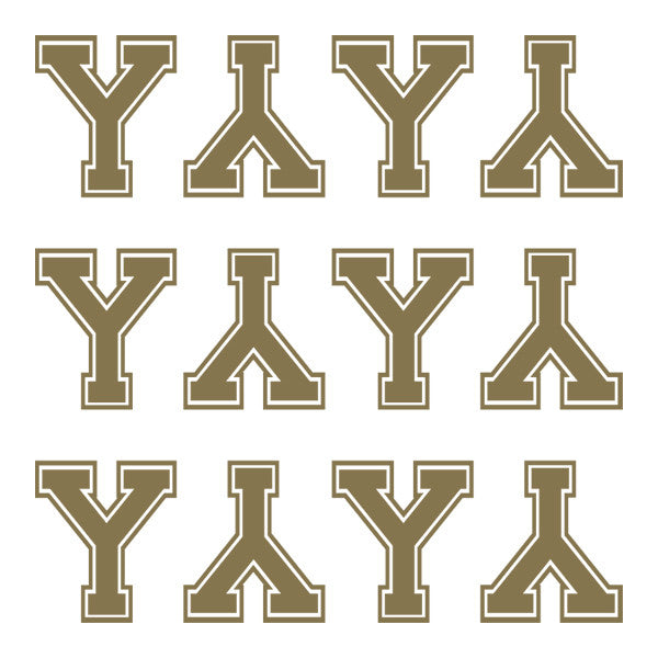 ID4 Varsity Large Gold Letter Y