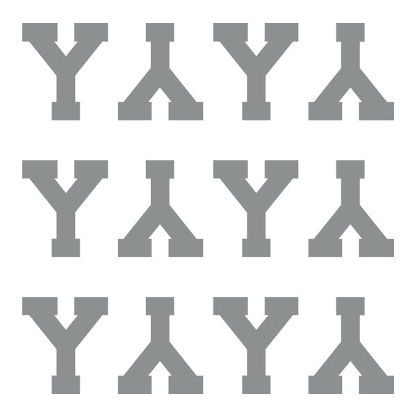 ID4 Varsity Pro Large Silver Letter Y