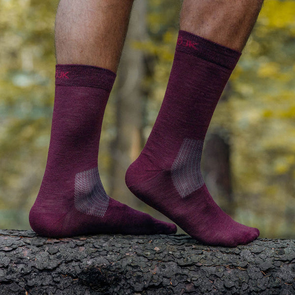 Everyday Merino Socks - Red wine