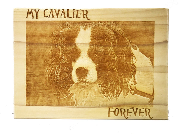 All Seasons Cavalier Portrait Sign