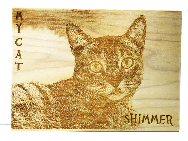 All Seasons Cat Portrait Sign