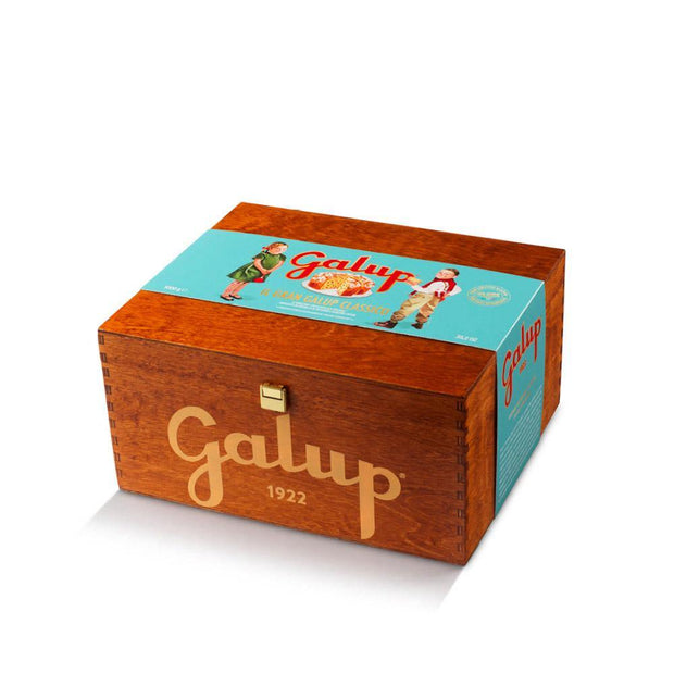 Panettone Gran Galup Tradizionale Turquoise Edition Scatola