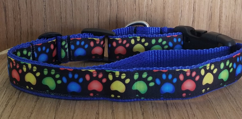 Rainbow Paw Prints Martingale Dog Collar