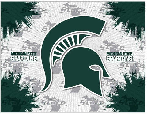 Michigan State Spartans HBS Gray Green Wall Canvas Art Picture Print