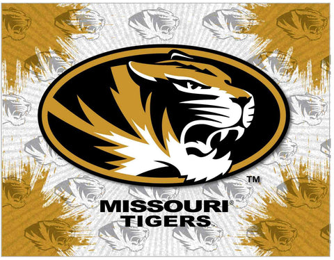 Missouri Tigers HBS Gray Gold Wall Canvas Art Picture Print