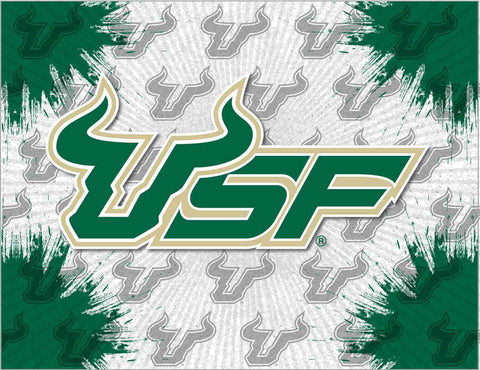 South Florida Bulls HBS Gray Green Wall Canvas Art Picture Print