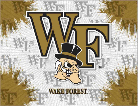 Wake Forest Demon Deacons HBS Gray Gold Wall Canvas Art Picture Print
