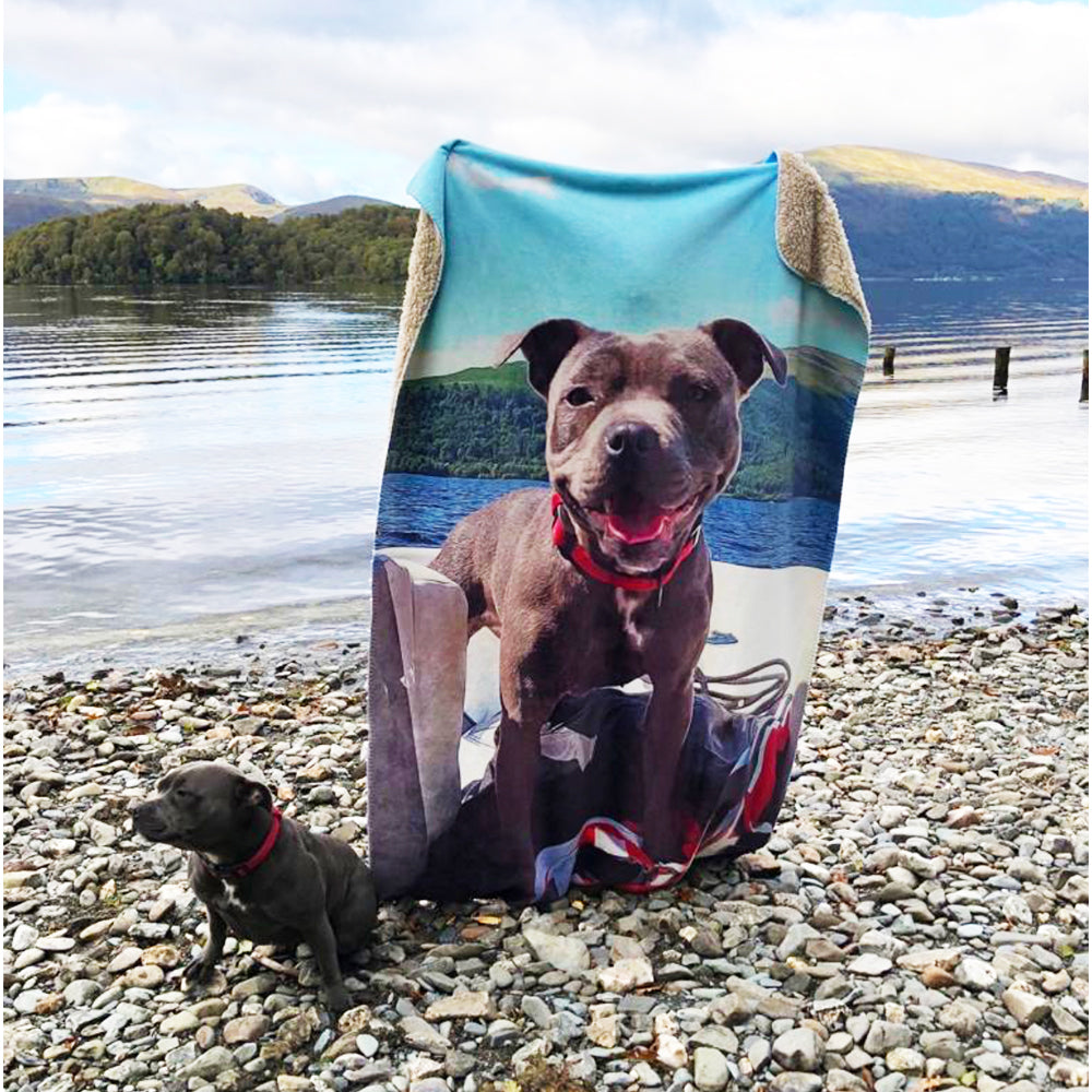 Bespoke illustrated pet blanket - lovepaw