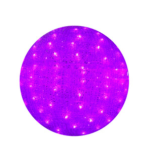Purple Christmas light ball for decorating