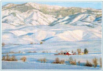 Gift Card by Kaye York: Distant Ranch