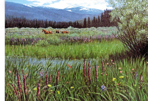 Gift Card by Kaye York: Stolle Meadow