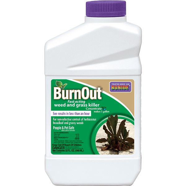 BONIDE BURNOUT WEED & GRASS KILLER CONCENTRATE 1 QT