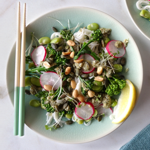 Radish, broad bean and Soba Noodle salad