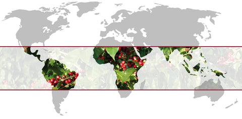 Coffee belt, coffee growing regions, coffee farmer, we offer free shipping with coffee subscription canada