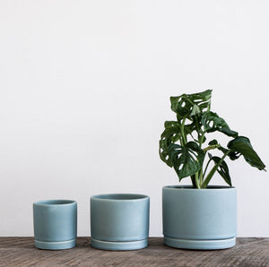 Tabletop Planter in blue - Wild Flower Shop