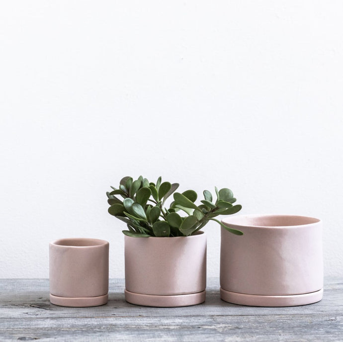 Tabletop Planter in pink - Wild Flower Shop