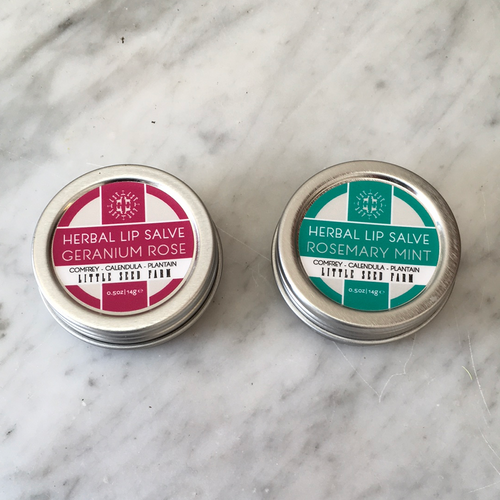 Healing Lip Salve - Wild Flower Shop